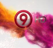 Canal9HD2012logo