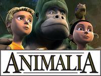 Animalia-0