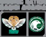 AFC Asian Cup 2027 Bid Logo (Saudi Arabia)