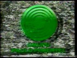 GPP 1992