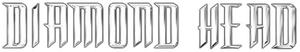 Diamond headlogo2