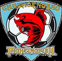 Chachoengsao FC 2008