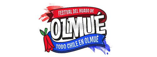 Logohuasoolmue2016