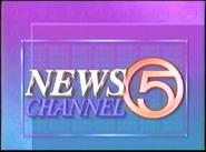 WEWS Newsbrief 1991