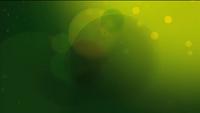 PBS 2009 BG Green