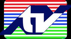 TVCE 10 1985