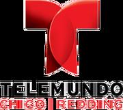 Telemundo 17 Logo 2