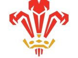 Wales national rugby union team