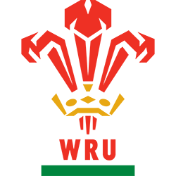 Wales Rugby 1992 logo