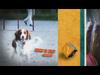 YLE TV2 Ident (2005-2012) (35)