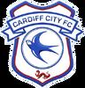 CardiffCity2015