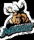 Manitoba Moose 2004