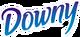Downy logo 2002