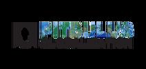 Pitbulls-Globalization