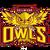 Guildford Owls