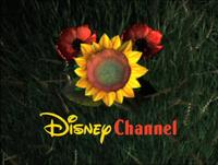 DisneyCicale1999