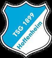 TSG Hoffenheim logo (until 2007)