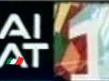 RaiSat Art