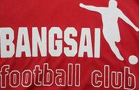 Bangsai FC 2017