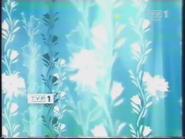 TVP1 2004-2010 (18)