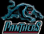 608828-panthers-logo