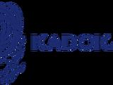 Kadokawa Corporation