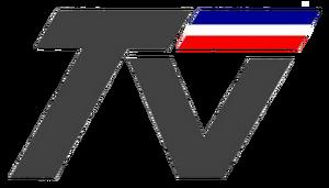 TVN (Gris 1992-1996)