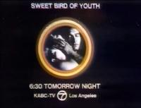 KABC Sweet Bird Of Youth Promo Slide 1972