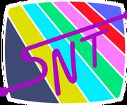 Logo snt 1989