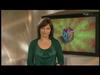 YLE TV2 n tunnukset ja kanavailmeet 1970-2014 (84)