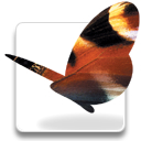 Adobe InDesign (2002-2005)