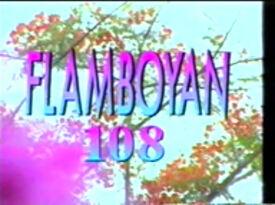 Flamboyan 108