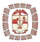 Transvaal 1980s logo