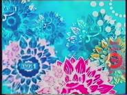 TVP1 2004-2010 (14)