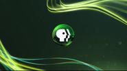 PBS Promo (Green)