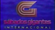 1991 sg