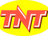 TNT (United States)/Logo Variations