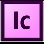 Adobe InCopy (2012-2013)