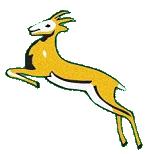 Springboks 1937-62