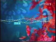 TVP1 2004-2010 (17)