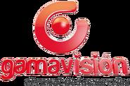 Gamavisión3D1