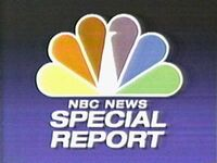 NBC News Special Report (1989)
