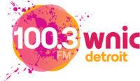 100.3 WNIC 2013 logo