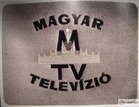 Mtv1 logo 60