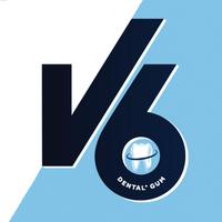 V6 (2019)
