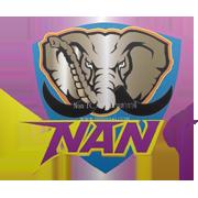 Nan FC 2010