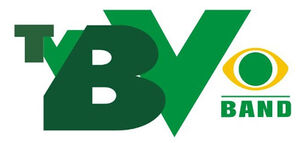 TVBV 2000