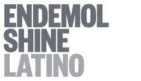 EndemolShine Latino Grey RGB