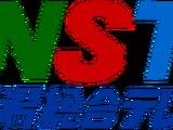 Niigata Sogo Television