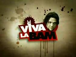 Viva La Bam Title Screen